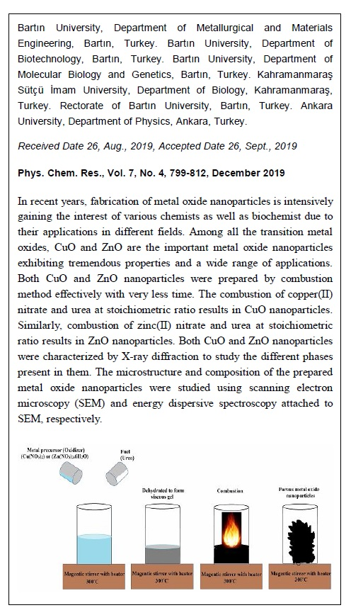 Antimicrobial Investigation of CuO and ZnO Nanoparticles Prepared by a Rapid Combustion Method